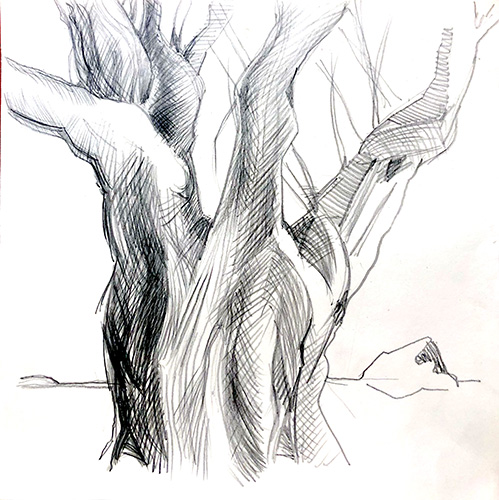Finix 2020 Bleistift, 40 x 40 cm