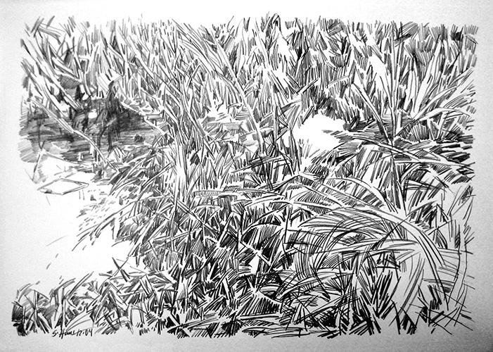 Laascher Sumpf 2004 Bleistift, 59 x 84 cm